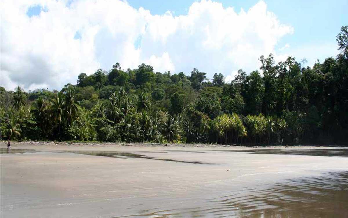 Costa Rica beach resort surrounded nature